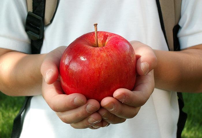 legume-fructe-lapte-școli